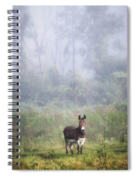 August Morning - Donkey In The Field. Spiral Notebook