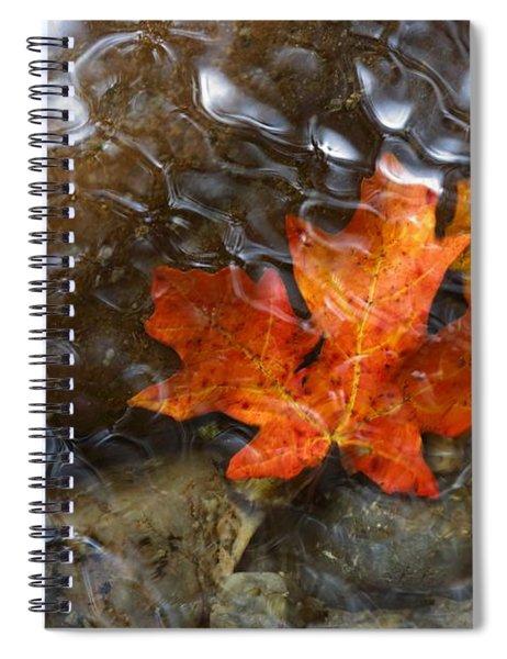 Autumn Down Under Spiral Notebook