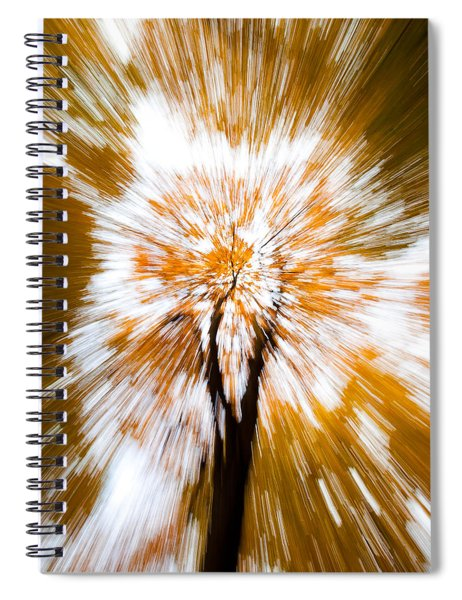 Autumn Explosion Spiral Notebook