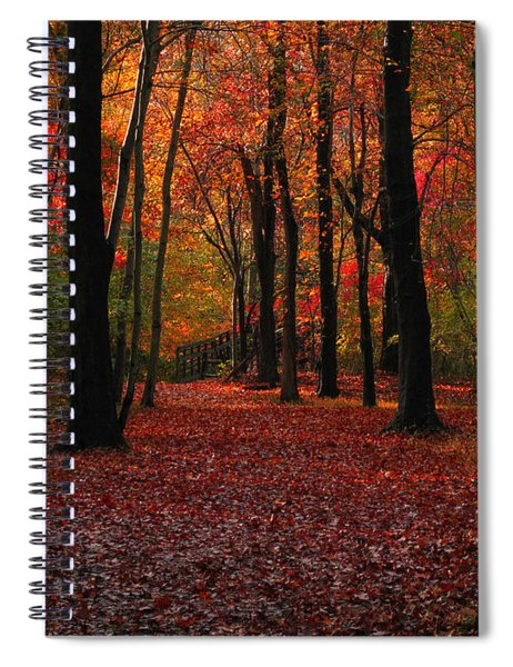 Autumn IIi Spiral Notebook