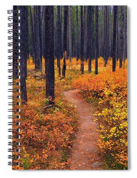 Autumn In Yellowstone Spiral Notebook