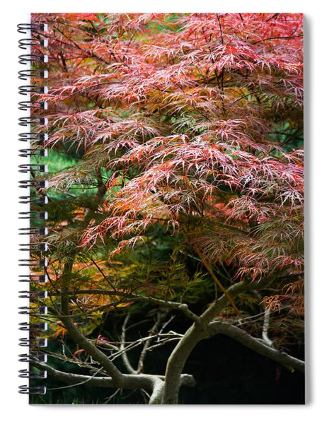 Autumn Is Here Spiral Notebook