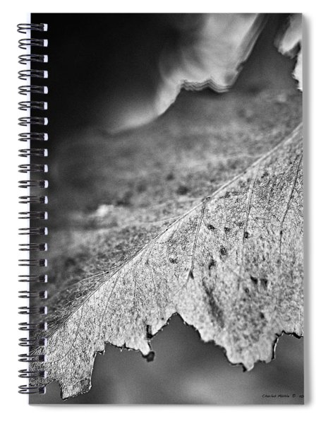 Autumn Leaves B And W Spiral Notebook