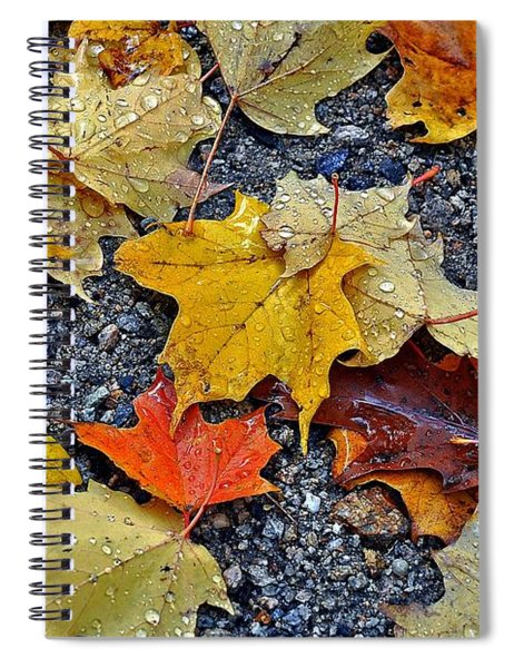 Autumn Leaves In Rain Spiral Notebook