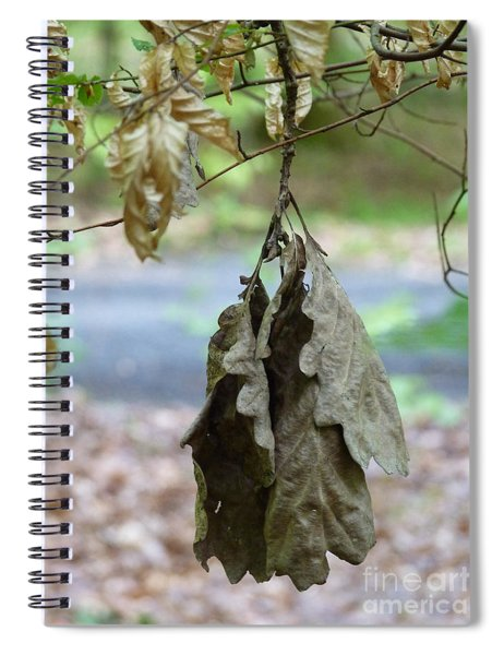 Autumn Leaves In Summer Spiral Notebook