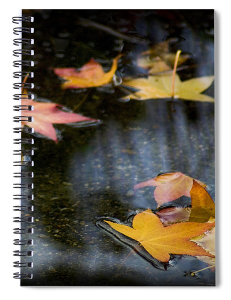 Autumn Leaves On Water Spiral Notebook