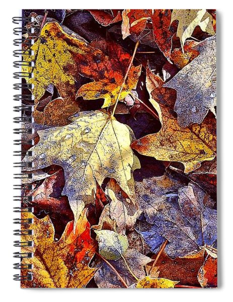 Autumn Leaves With Frost Spiral Notebook
