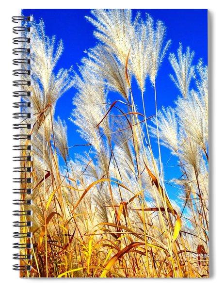 Autumn Pampas Spiral Notebook