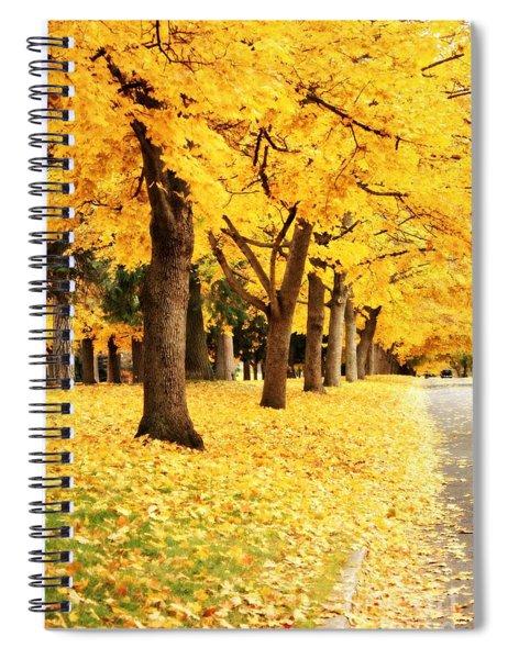 Autumn Perspective Spiral Notebook