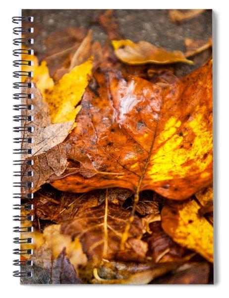 Autumn Pile Spiral Notebook