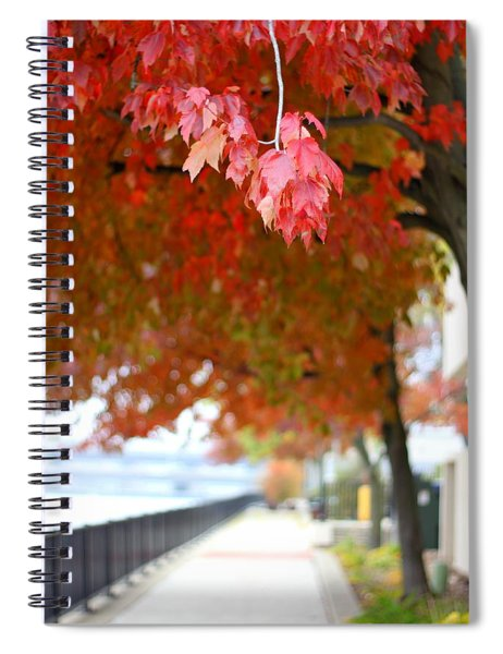 Autumn Sidewalk Spiral Notebook