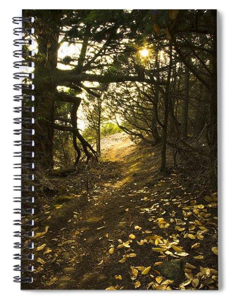 Autumn Trail In Woods Spiral Notebook