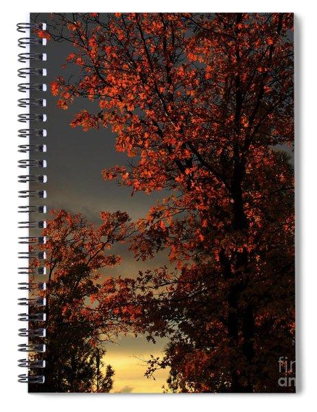 Autumn's First Light Spiral Notebook