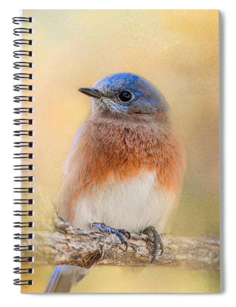 Autumn's Treasure Spiral Notebook