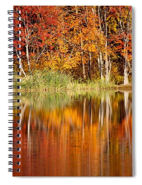 Autumns True Colors Spiral Notebook