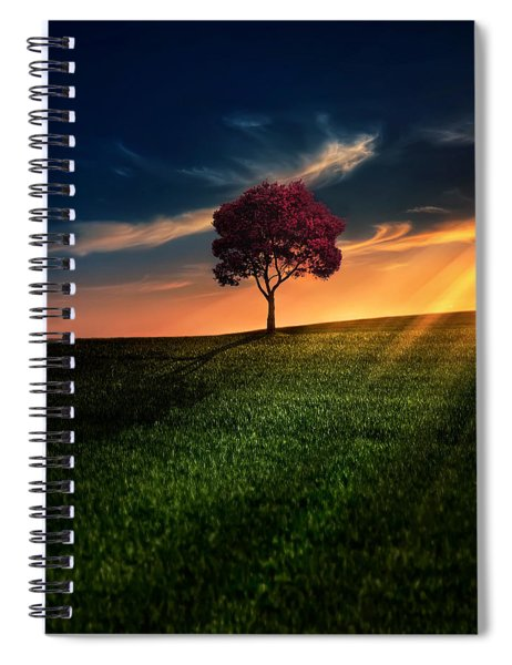 Awesome Solitude Spiral Notebook