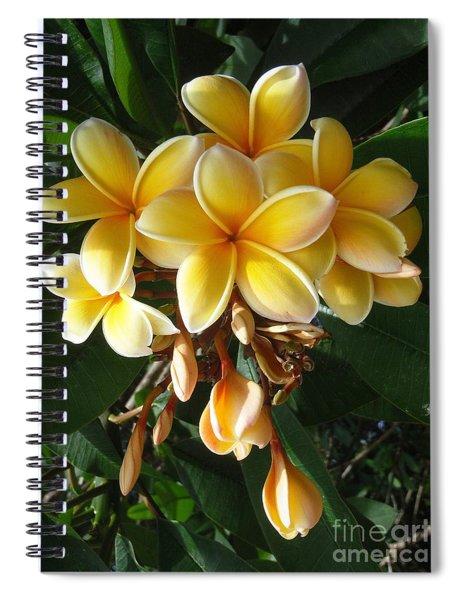 Aztec Gold Plumeria Spiral Notebook