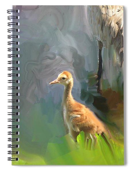 Baby Crane And Mom Spiral Notebook