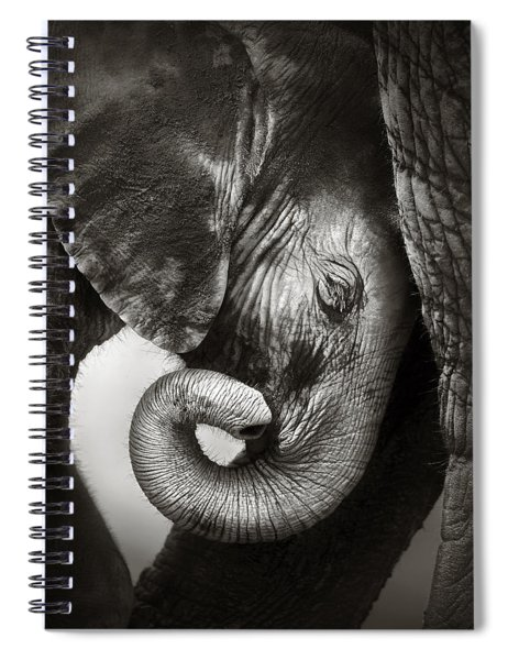 Baby Elephant Seeking Comfort Spiral Notebook
