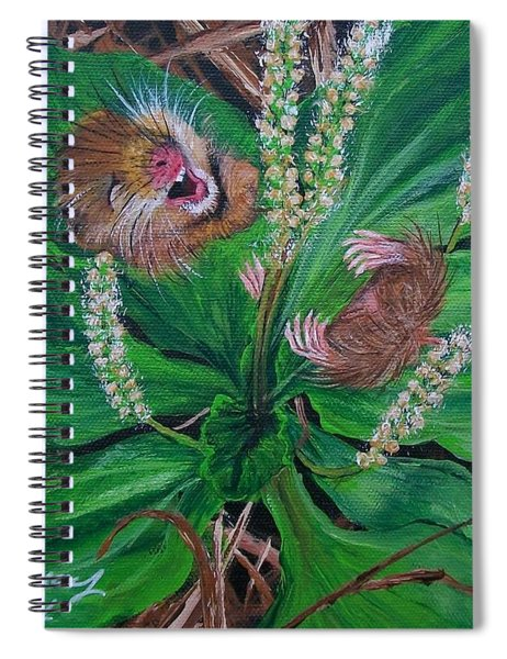 Baby   Molly  Spiral Notebook