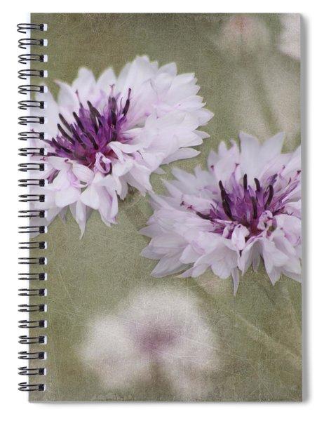 Bachelor Buttons - Flowers Spiral Notebook