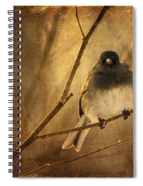 Backlit Birdie Being Buffeted  Spiral Notebook