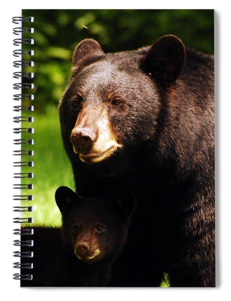 Backyard Bears Spiral Notebook