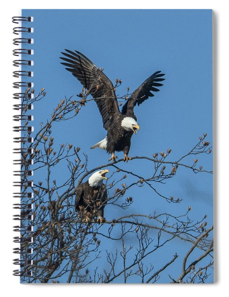 Bald Eagles Screaming Drb169 Spiral Notebook
