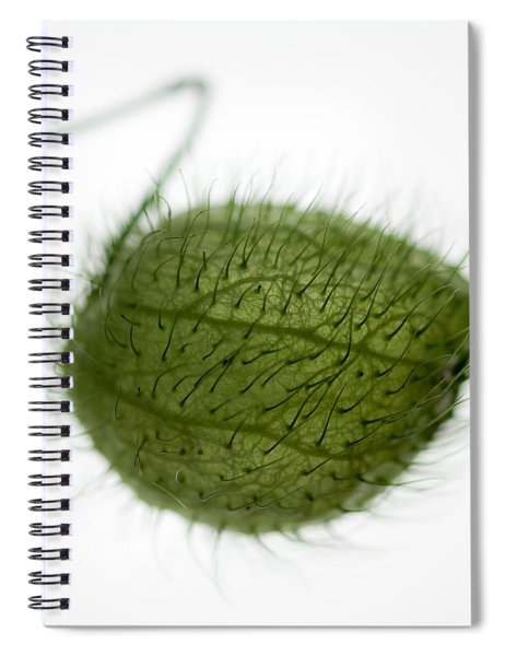 Balloon Plant Spiral Notebook