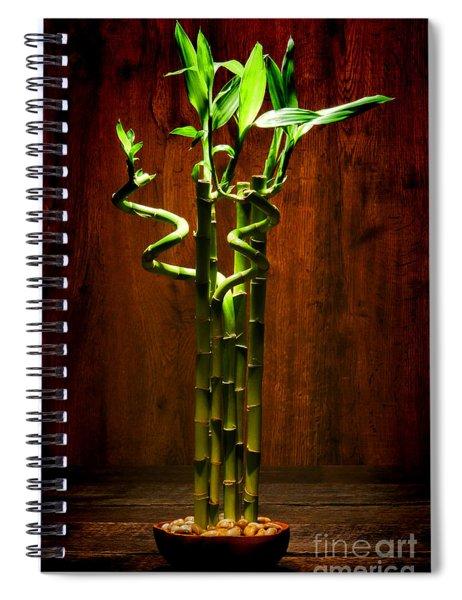 Bambooesque  Spiral Notebook