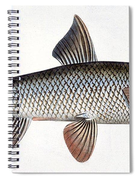 Barbel Spiral Notebook