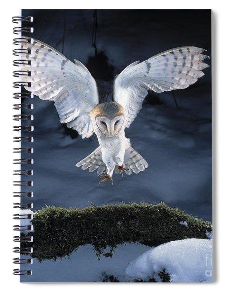 Barn Owl Landing Spiral Notebook