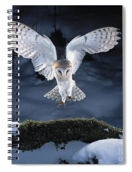Barn Owl Landing Spiral Notebook