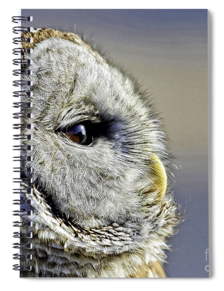 Barred None Spiral Notebook