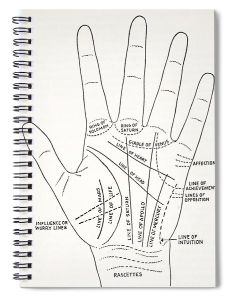 Basic Lines And Lesser Lines Of The Hand Spiral Notebook