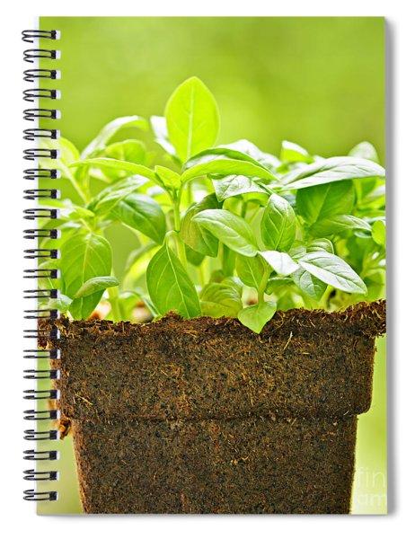 Basil Spiral Notebook