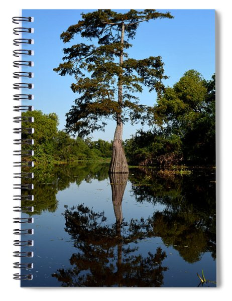 Bayou Reflections Spiral Notebook