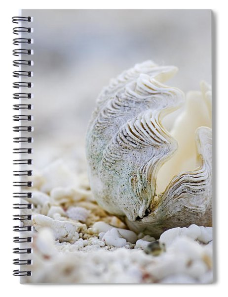Beach Clam Spiral Notebook