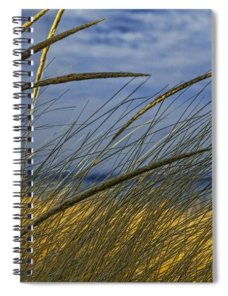 Beach Grass On A Sand Dune At Glen Arbor Michigan Spiral Notebook