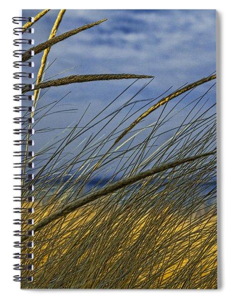 Beach Grass On A Sand Dune At Glen Arbor Michigan Spiral Notebook
