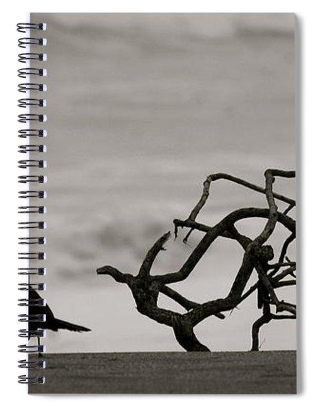 Beach Walk Spiral Notebook