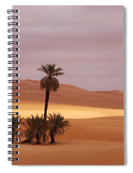 Beautiful Desert Spiral Notebook