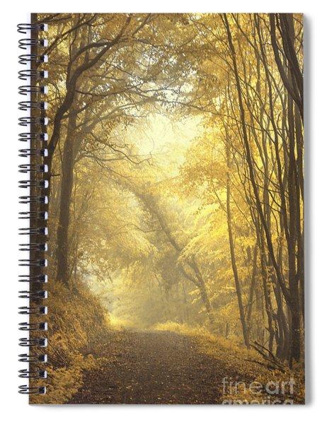 Beautiful Fall Spiral Notebook