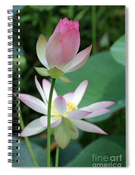 Beautiful Lotus Blooming Spiral Notebook