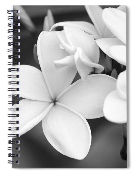 Beautiful Plumeria In Black And White Spiral Notebook