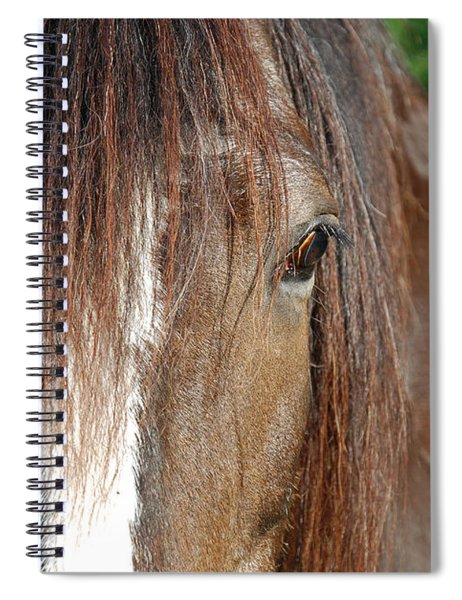 Beautiful Shire Spiral Notebook