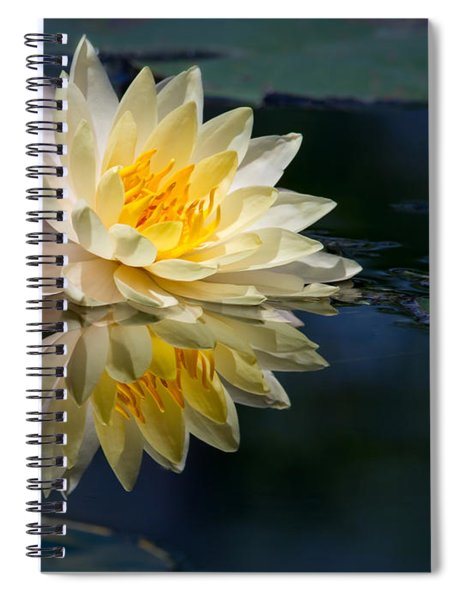 Beautiful Water Lily Reflection Spiral Notebook