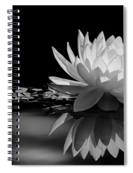 Beautiful Water Lily Reflections Spiral Notebook
