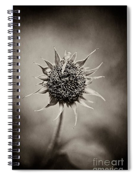 Beauty Of Loneliness Spiral Notebook
