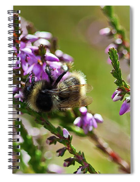 Bee On Heather Spiral Notebook